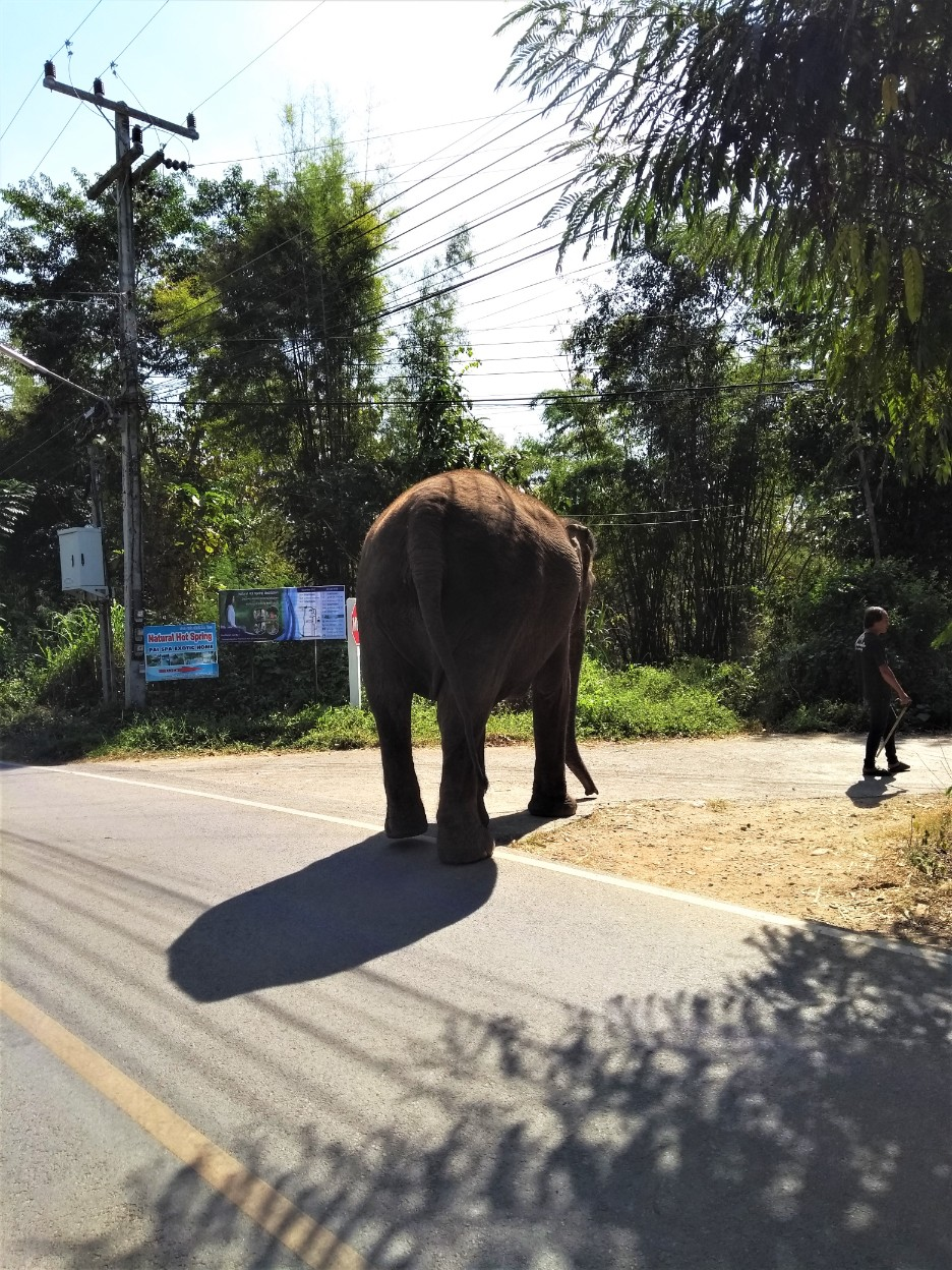 Christmas Road Trip from Chiang Mai to Pai | Charlie on Travel